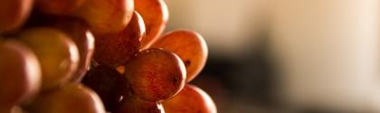 UK seedless grape market